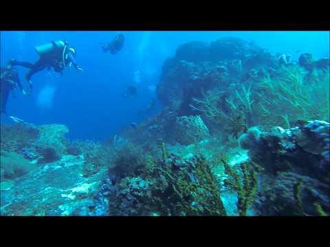 Scuba Diving Cozumel 2014