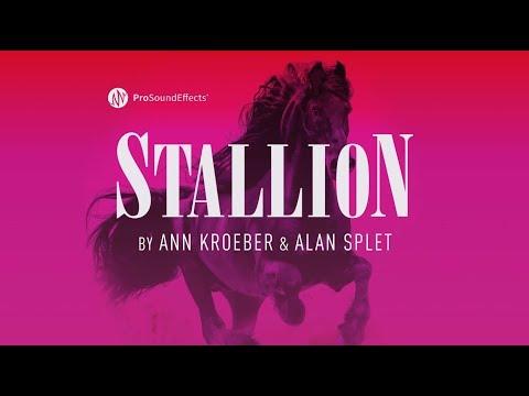 Stallion - Horse Sound Effects Library - by Ann Kroeber & Alan Splet
