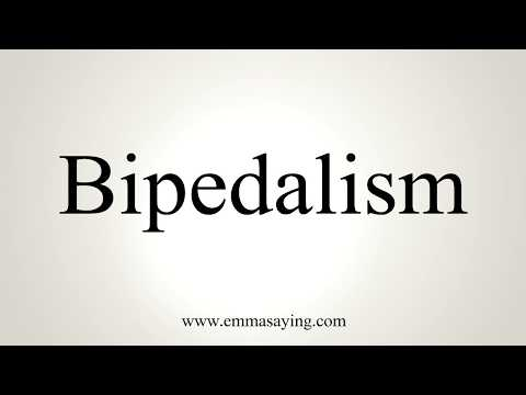 How To Pronounce Bipedalism