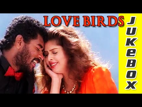 Love Birds Tamil Songs Jukebox - A. R. Rahman Hits - Valentine's Day Special 2018