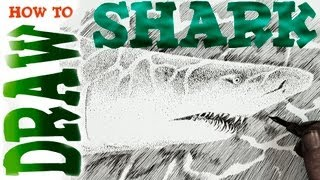 How to Draw a Shark (Advanced)- Spoken Tutorial