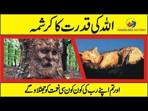 ( Allah ki Qudrat ) Islamic Video - Miracles of Allah in Nature thumbnail