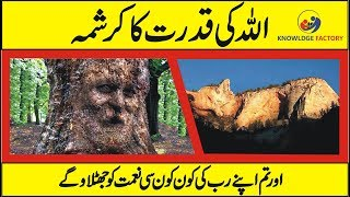 ( Allah Ki Qudrat ) Islamic Video - Miracles Of Allah In Nature