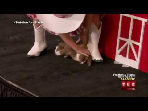Toddlers and Tiaras S06E09 - Animal on the run! (Me & My Pet: Tennessee) PART 3