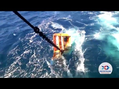 I&J Cape Hake Presented By Southstream