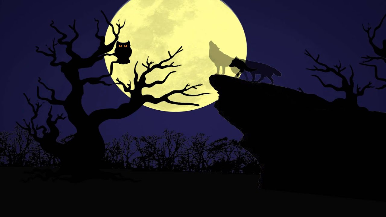 night owl animated end tag youtube