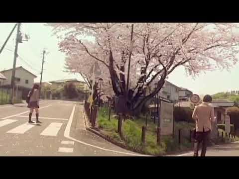 もしもまたいつか- Moshimo Mata Itsuka (cover Video Kimi Ni Todoke)