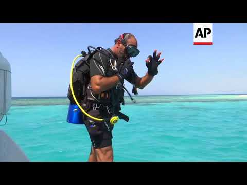 Saudi Arabia looks to its coastline to develop diving tourism ++REPLAY++