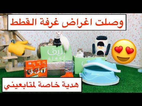 وصلت اغراض غرفة القطط 😻 العاب وبيت واكل و الكثير... وهدية خاصة لمتابعيني😍💙 / Mohamed Vlog