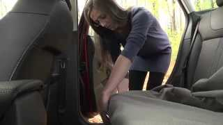 How To Install Pet Seat Covers (drsfostersmith)