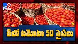 Tomato price drop down to 50 paise per kg - TV9