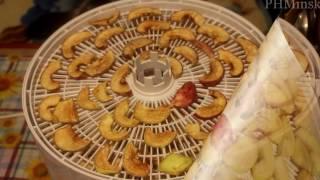 видео Cушилка для овощей и фруктов Беломо 8360