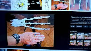 MUMMIFIED ALIEN 3 FINGER HAND WITH 8 INCH FINGERS FOUND IN PERUVIAN TUNNEL
