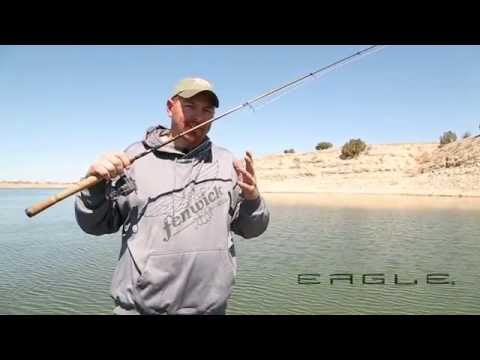 Fenwick Eagle Series Rods - Fishing Rod Review