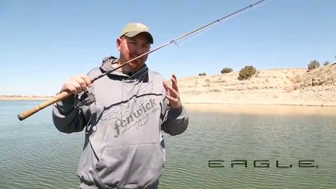 Fenwick Eagle Series Rods - Fishing Rod Review - YouTube