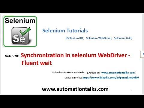 Selenium Video 28