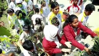 Habitat Schools' planting initiative hands over 6000 saplings to Ajman Municipality
