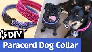 DIY Paracord Dog Collar | Small, Medium, Large Size | Sea Lemon