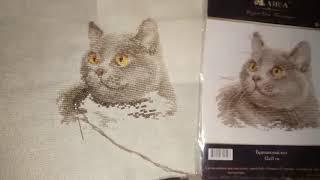 """Процесс вышивки и готовая работа! Набор Алиса """"Британский кот"""". Проект """" До конца""""…"""