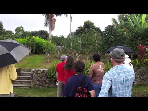 "ThruJimsEyes - ""Hawaii:  Greenwell Kona Coffee Farm Tour"""