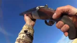 Охота на гуся 2017 в Казахстане