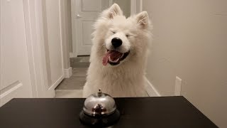 RING THE BELL, GET THE TREAT!!