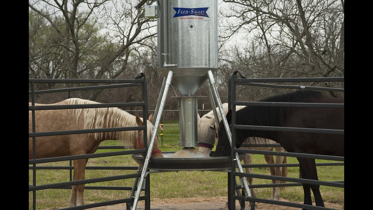 mizer horse feeders to cattle feeder welcome sale for the hay