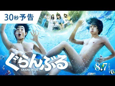 『ぐらんぶる』映画のフル動画を公式配信で無料視聴する方法3選