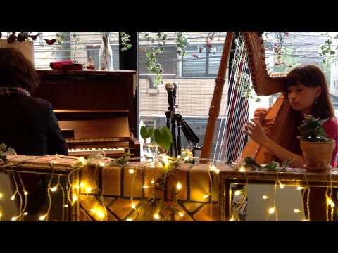福岡市中央区赤坂の美容室FAVORピアノ&ハープセッション 2014/11/9