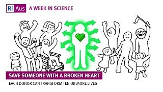 Organ donation: save someone with a broken heart - A Week in Science