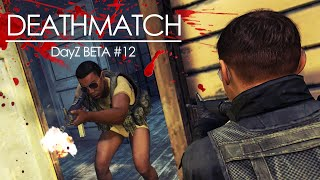 DayZ BETA #12 - FRIENDLY im KRIEG: Der Kamy-DEATHMATCH-Server! Mp3