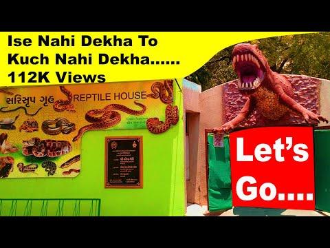 Kankaria Lake Front & Zoo Visit - Ahmedabad Gujarat India
