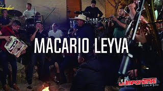 La Imponente Vientos de Jalisco - Macario Leyva - (Musical En Vivo)