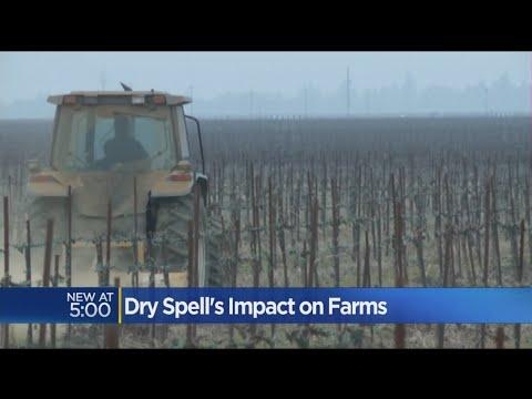 Dry December Has California Farmers Praying For Rain