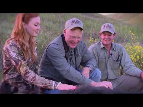 Episode 7: Hog Hunting On The California Coast