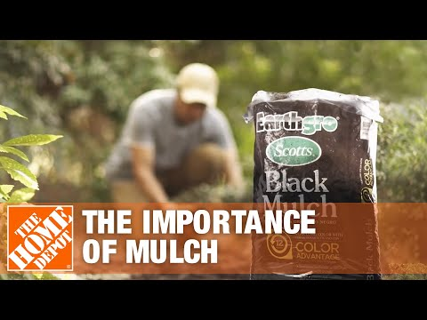 The Importance Of Mulch | Mulching Your Yard | The Home Depot