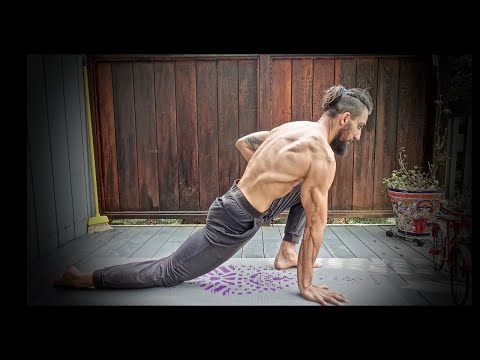 Stretching Routine for Beginners (Follow Along)