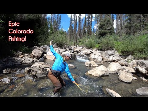 The TOP 10 Fishing Spots In Colorado - McFly Angler Episode 72