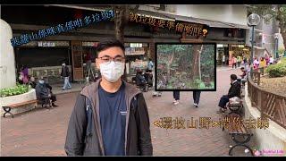 Publication Date: 2020-03-12 | Video Title: 環故山野 Ep1--快閃菠蘿山, 一片睇曬山上有幾多垃圾