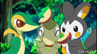 Off To See The World AMV Pokemon Requested