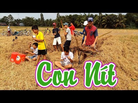 MV Con Nít - Tuổi Thơ Dữ Dội - Lynk Lee Acoustic - Con Nit channel