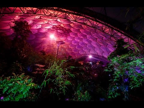 Enchanted Rainforest At The Eden Project December 2014