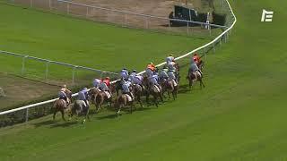 Vidéo de la course PMU PRIX D'ECQUEVILLY