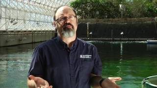 Biosphere 2 Short Documentary