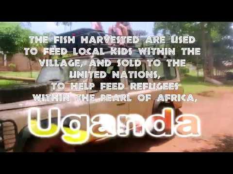 Folkstad Fish Farm Uganda