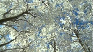 Amazing winter wonderland, Part 4 weather change, nature scenes with Llewellyn relaxation music