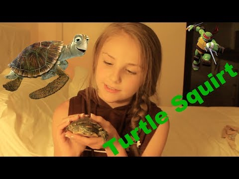 Getting A Pet Turtle!!!