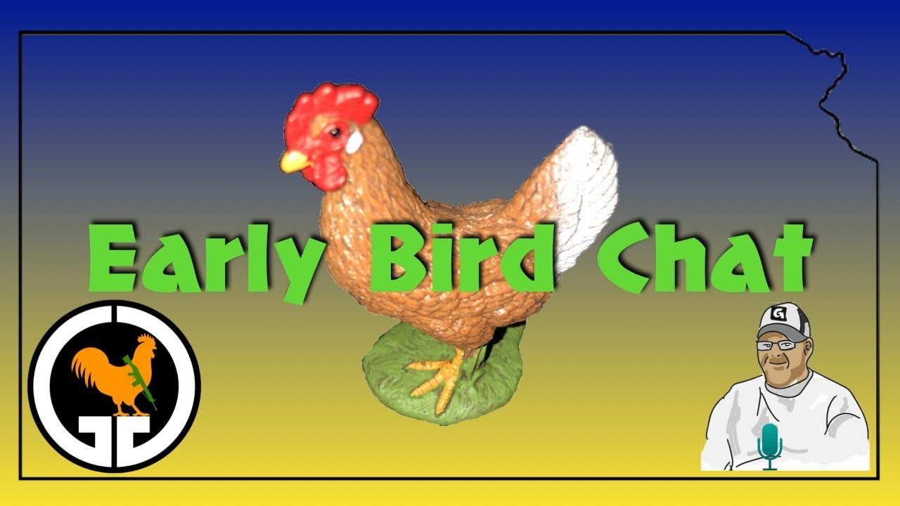 Early Bird Chat #46 - Memorial Day Edition