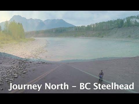 Journey North BC Steelhead