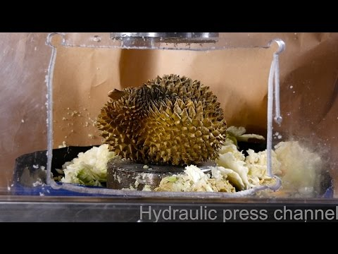 Crushing durian with hydraulic press